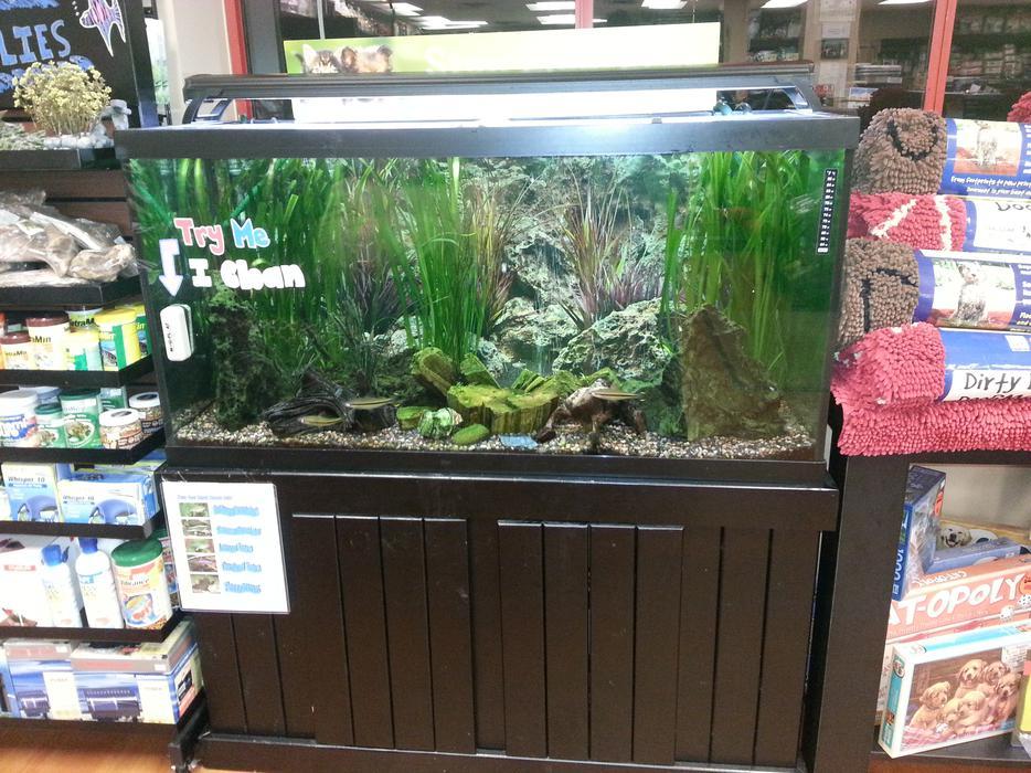 90 gallon aquarium fish and equipment for sale saanich for 90 gallon fish tank for sale