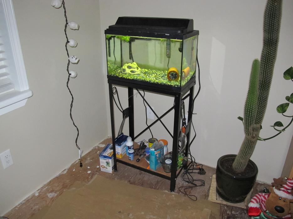 10 gallon fish tank west shore langford colwood metchosin for 10 gallon fish tank with filter