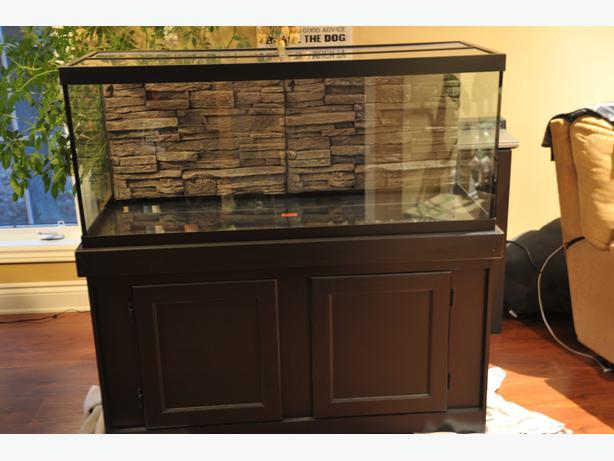 Aquarium stands quebec aquarium stand skirt aquarium for Used 300 gallon fish tank for sale