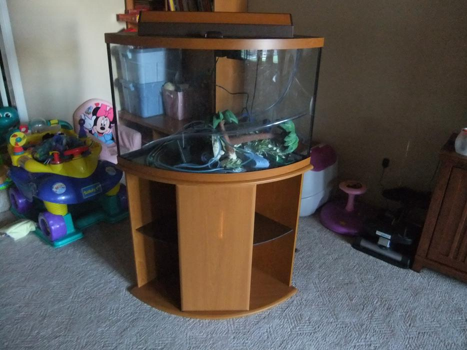 36 gallon corner aquarium west shore langford colwood for 55 gallon corner fish tank
