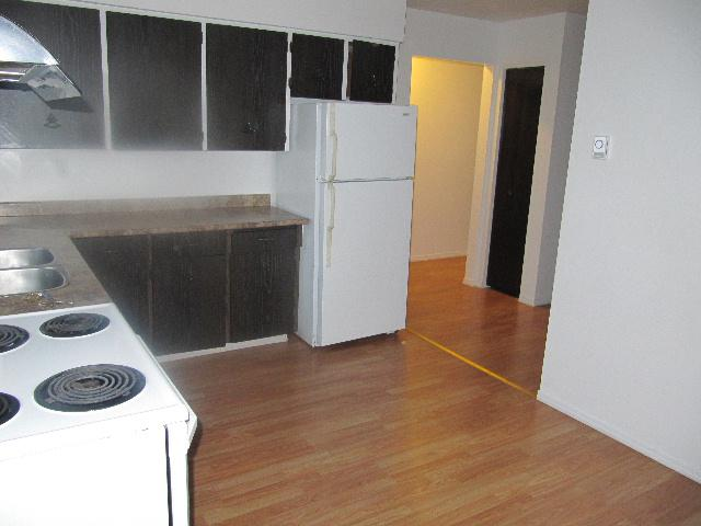 Completely Renovated Large 3 Bedroom Duplex All Utilities