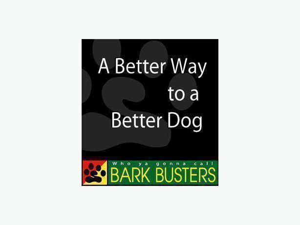Bark Busters Edmonton In Home Dog Training