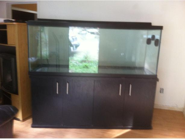 210 150 45 gallon aquariums for sale or trade malahat for 200 gallon fish tank for sale