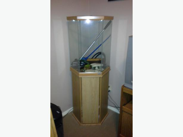 Oceanic 30 gallon hexagon aquarium w stand north nanaimo for Hexagon fish tank with stand