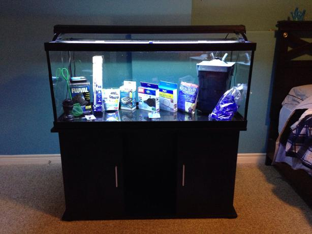 75 gallon fish tank kanata ottawa for Fish tank filter not working