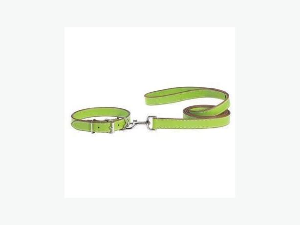 Parrot Green Leather Dog Collar & 6' Leash - Size XL - NEW TAGS
