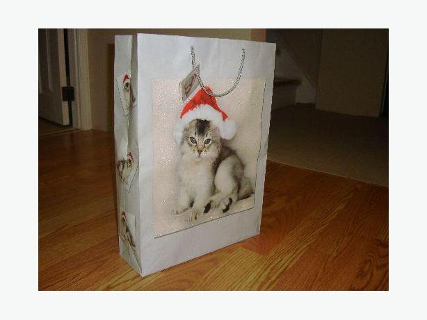 Like New Large Cat Gift Bag - Excellent Condition! $1