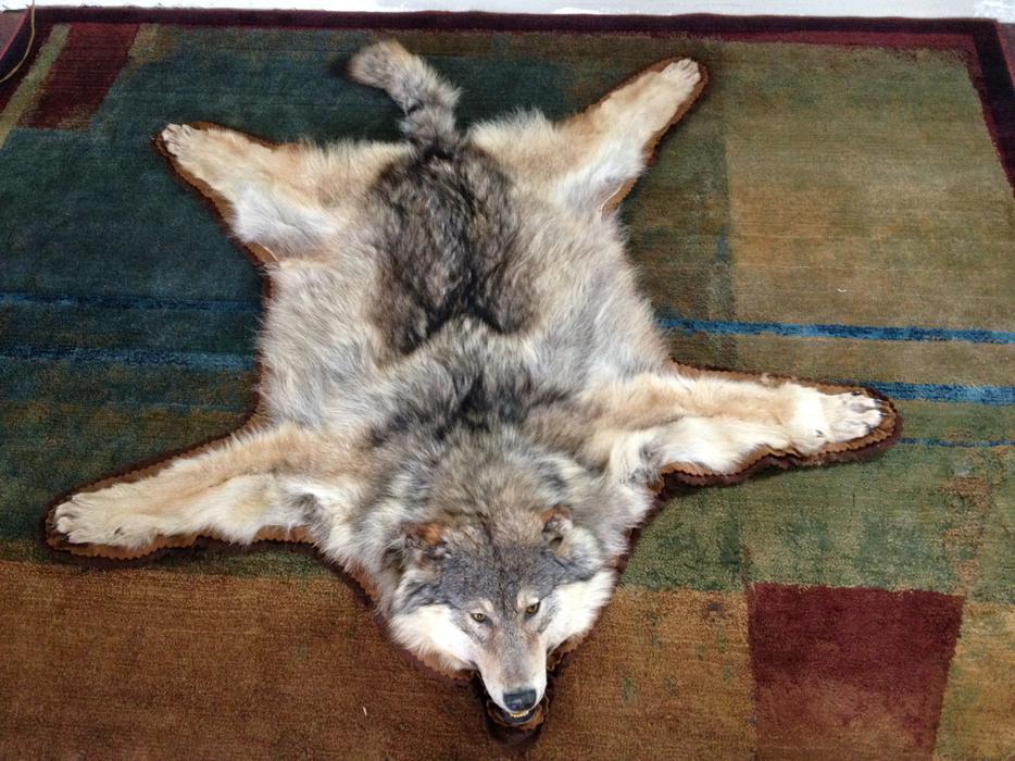 Bella marie wolf amp ana nova anal threesome 10