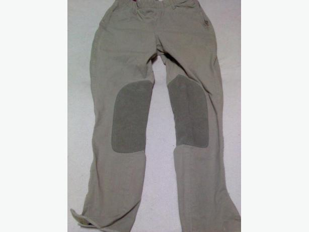 Equestirian Riding pants