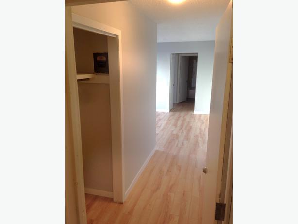Brand New Renovated 2 Bedroom Apartment For Rent 1212 Retallack St Central Regina Regina