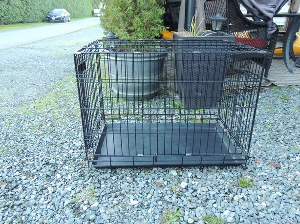 Medium sized dog crate saanich victoria for Dog crates for medium sized dogs