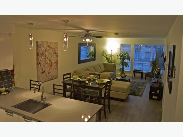 """""""The Oasis"""" Luxurious condo from $175.00 CAD/night including parking"""