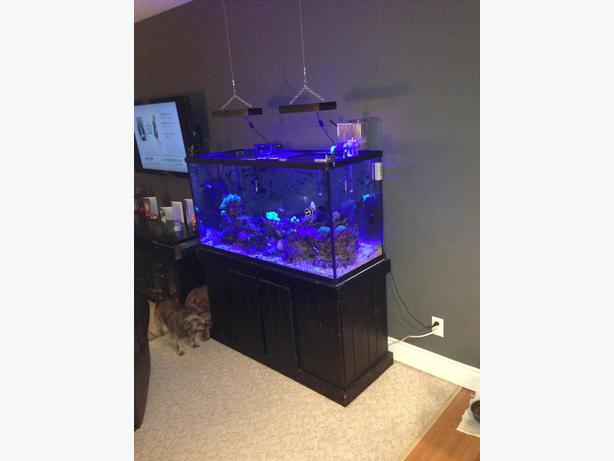 New price 90 gallon tank with stand victoria city victoria for 90 gallon fish tank stand