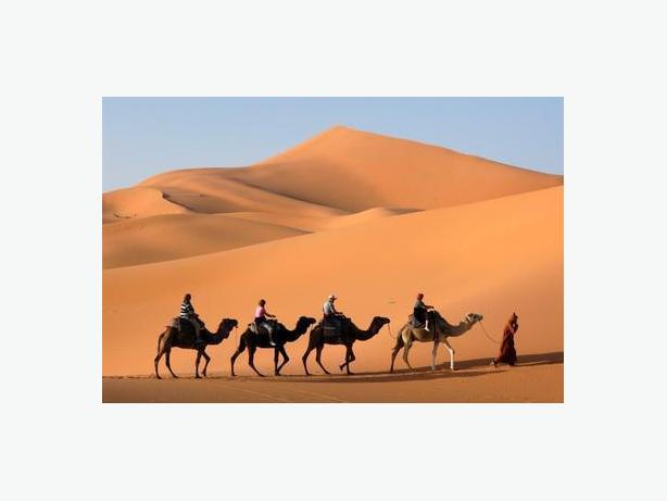 Cours d'arabe: Let's talk and read Arabic