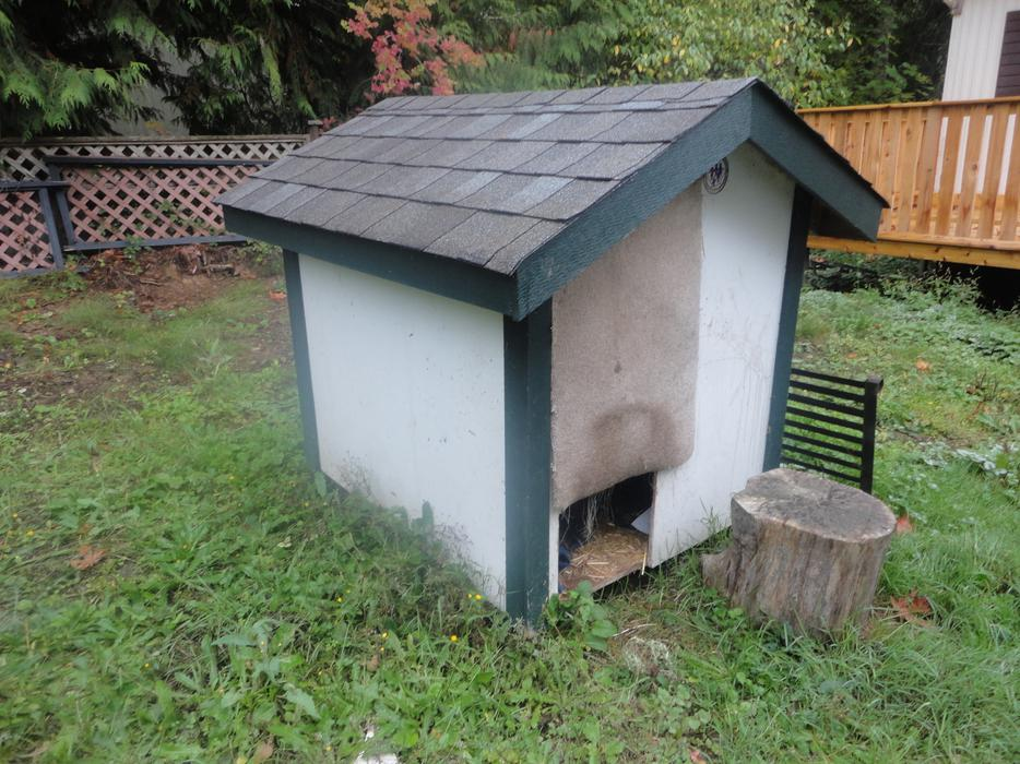 Great dog house for large breed weather proof sturdy for Large breed dog house