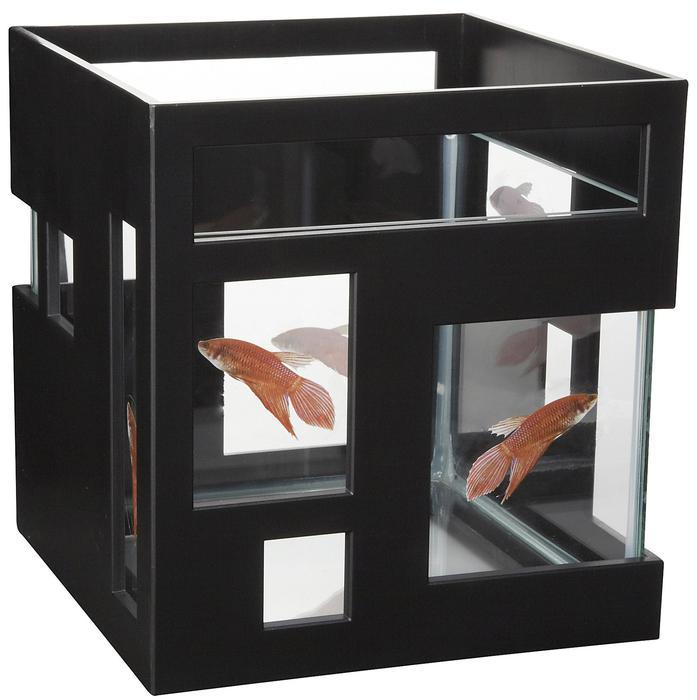 Fish hotel 2 gallon uber stackable aquarium north for Umbra fish hotel