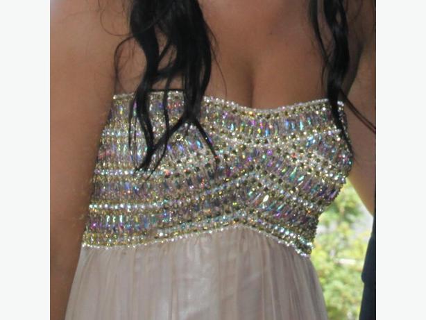 2014 La Femme Prom/Grad Dress