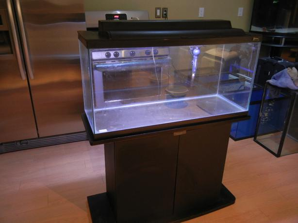 30 Gallon Hagen Aquarium Hagen Stand And Filter Heater
