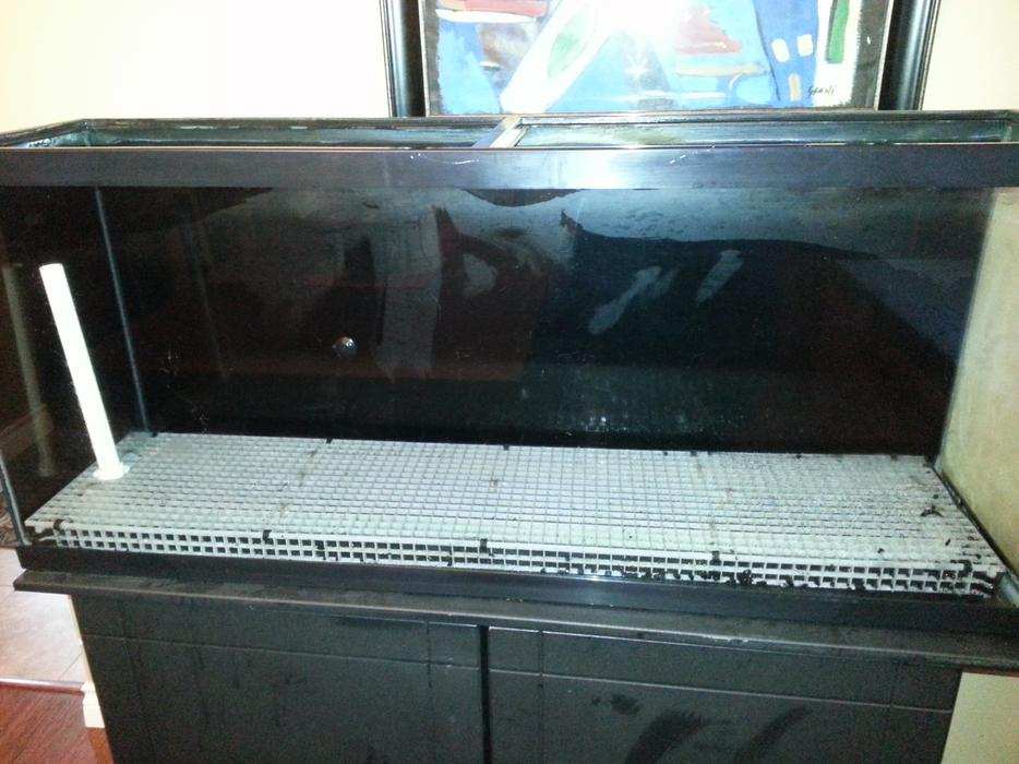 55 gal fish tank stand west shore langford colwood for Amazon fish tanks for sale
