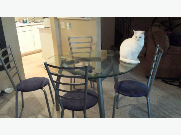 Glass Dining Room Table And 4 Chairs Surrey Incl White Rock Vancouver
