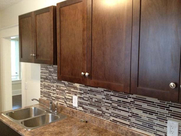 Newly Renovated Spacious 4 Bedroom With 6ft Privacy Fence