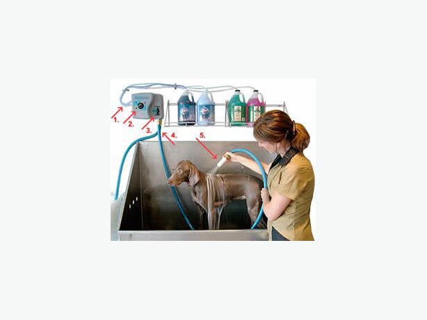 Bathmaster Kamloops bathmaster professional dog bathing system nanoose bay, nanaimo