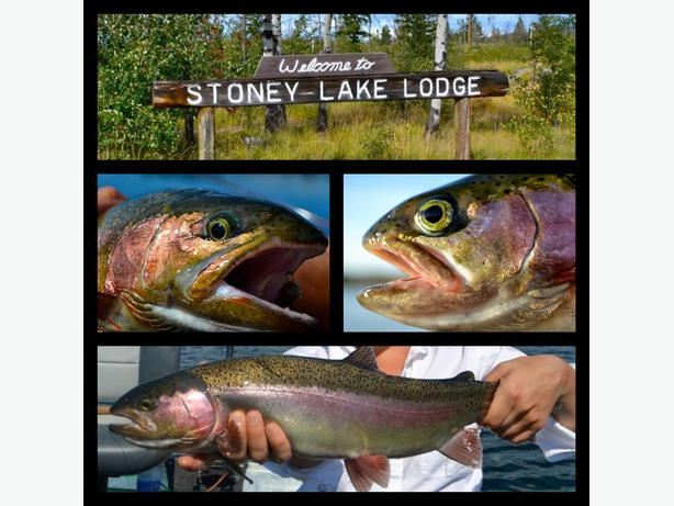Unique seasonal fly fishing job opportunity saanich victoria for Fly fishing jobs
