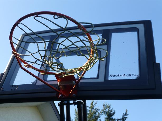 Reebok Basketball hoop Central Saanich, Victoria