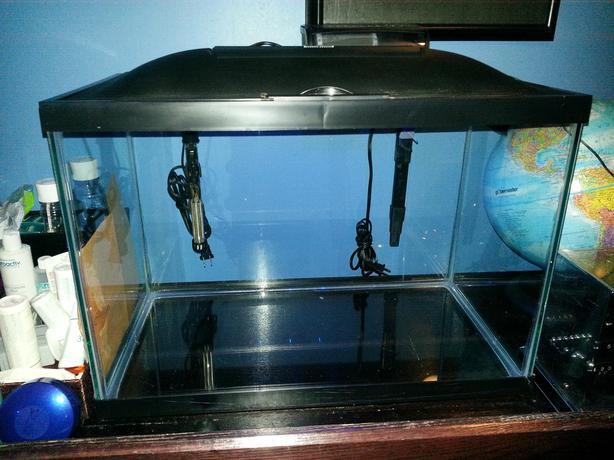 20 gallon aquarium central nanaimo nanaimo for 50 gallon fish tank hood