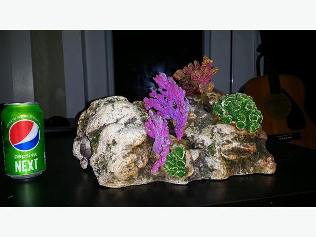 Coral aquarium decoration west shore langford colwood for Aquarium log decoration
