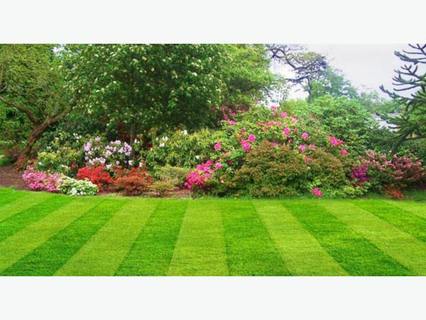 Artis tree garden services saanich victoria for Tree and garden services