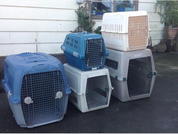 Dog Crates For Sale Winnipeg