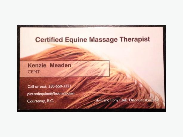 Certified Equine Massage Therapist