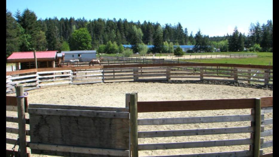 Horse Board In Errington Parksville Parksville Qualicum