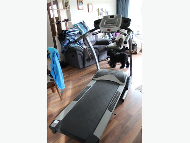 free spirit 30516 treadmill manual