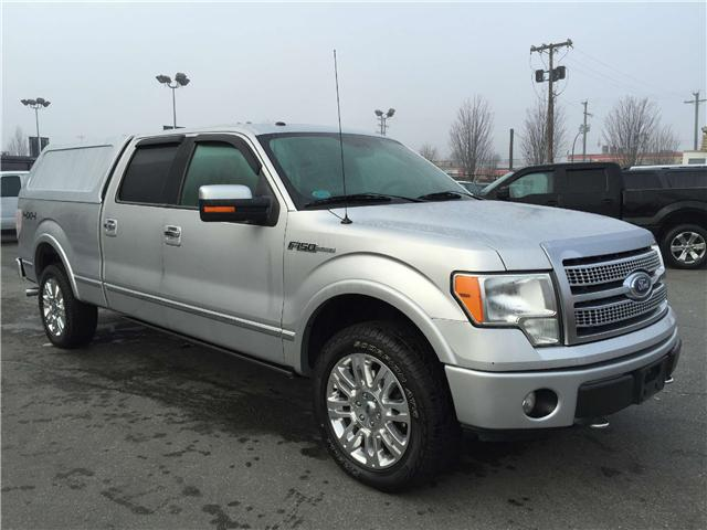 2010 ford f 150 platinum with canopy 100 easy financing drive away today outside okanagan. Black Bedroom Furniture Sets. Home Design Ideas