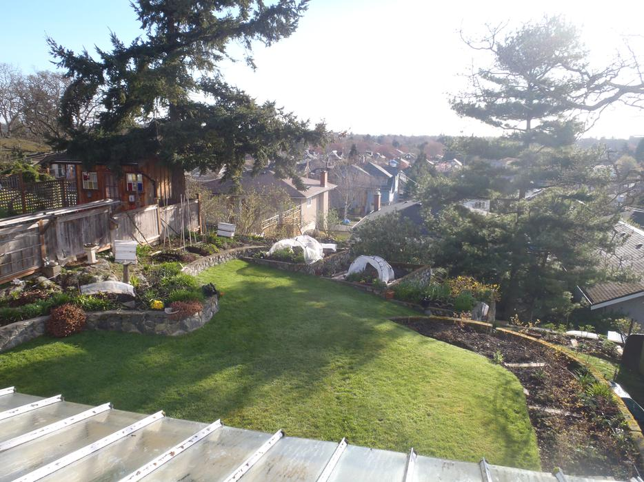 Victoria Bc 3 Bedroom Character House Winter Sublet 2