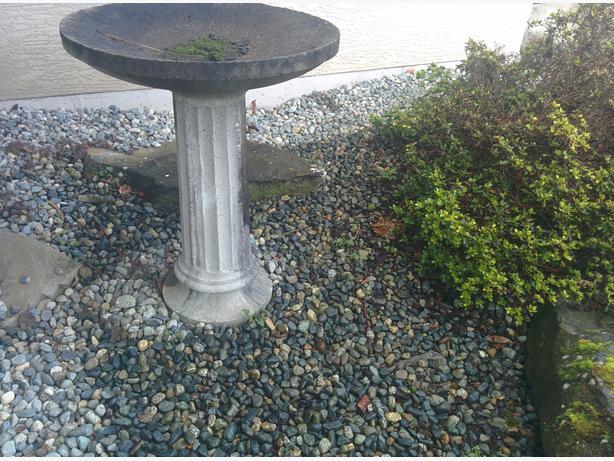Concrete Bird Bath 36 High South Nanaimo Parksville