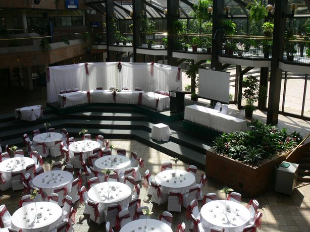 WEDDING/EVENT RENTALS/BILINGUE