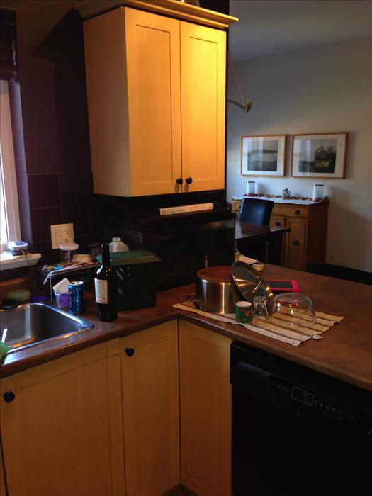 Kitchen cabinets esquimalt view royal victoria for Kitchen cabinets victoria
