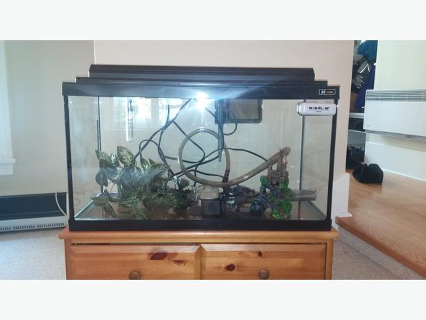 25 gallon aquarium fish tank with loads of supplies for 100 gallon fish tank for sale
