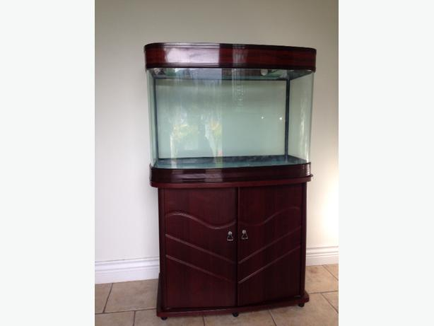 40 gallon acyllic aquarium with stand north nanaimo nanaimo for 40 gallon fish tank stand
