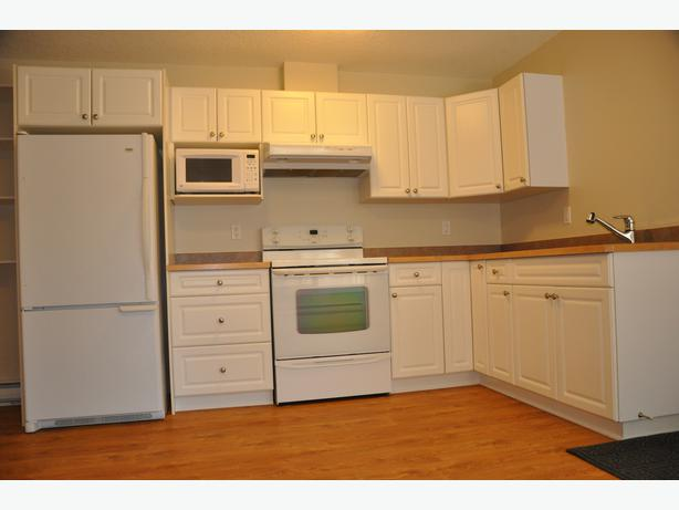 log in needed 825 1 bedroom legal basement suite