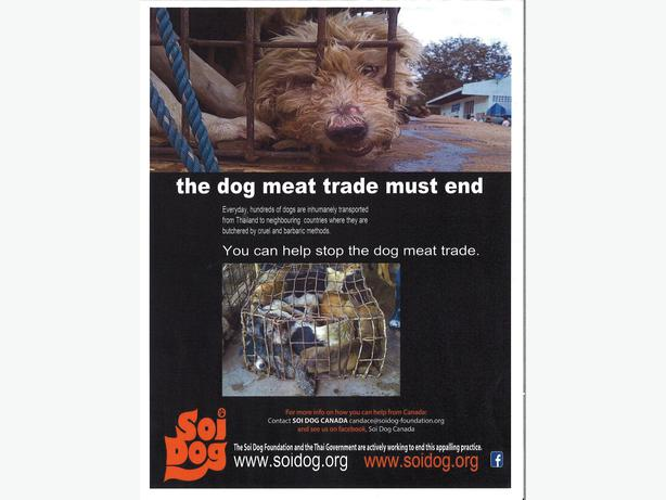 Raising funds to help end the illegal dog and cat meat trade.