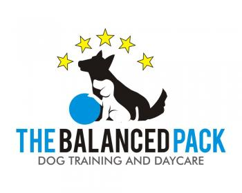 Balanced Dog Training Toronto