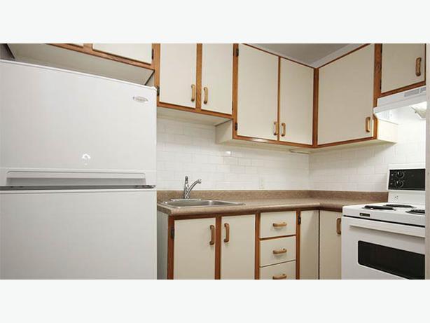 1 Bedroom Apartment Available For Rent June 1 Central Ottawa Inside Greenbelt Ottawa Mobile