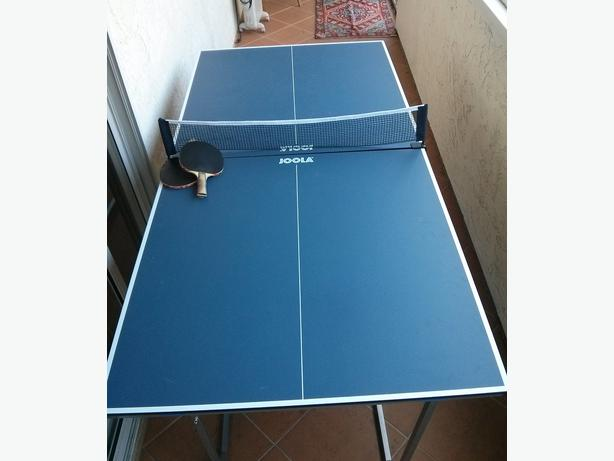 Mid Size Ping Pong Table, Great For Condos