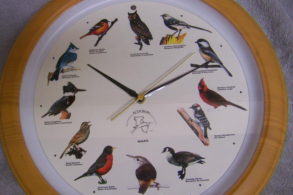 NATIONAL AUDUBON SOCIETY SONG BIRD CLOCK Saanich, Victoria | 934 x 622 jpeg 64kB