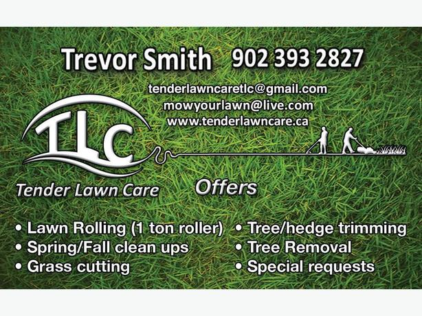 GRASS CUTTING, TREES, FLOWERS, MULCHING, LAWN ROLLING, CLEAN UPS