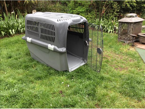 Giant breed dog kennel crate west shore langfordcolwood for Giant breed dog kennel